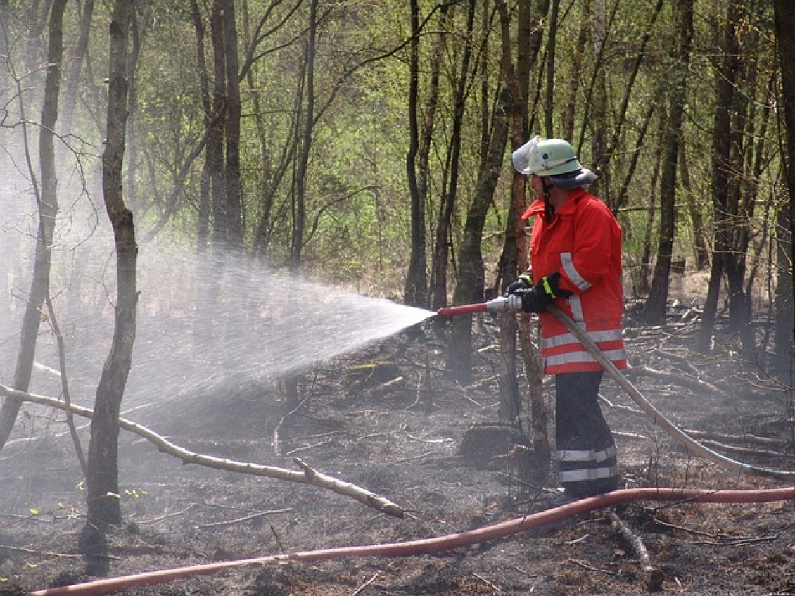 incendio, bombero apagando fuego