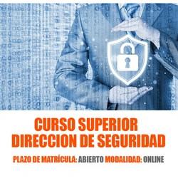 Director de Seguridad
