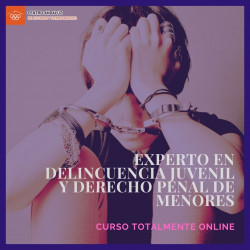EXPERTO EN DELINCUENCIA JUVENIL Y DERECHO PENAL DE MENORES